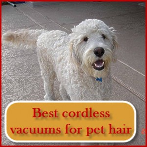 the best cordless vacuum for pet hair can handle stairs hard floors